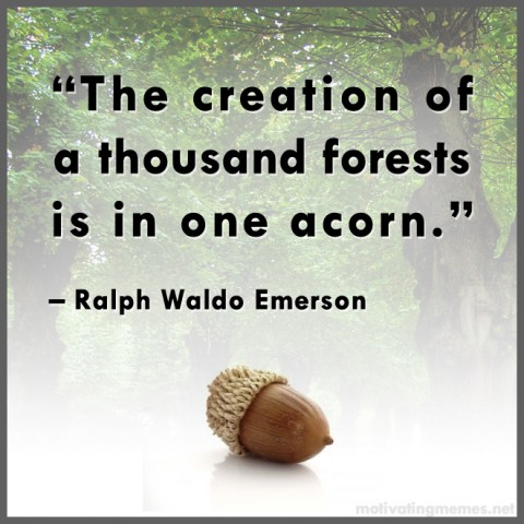 The creation of a thousand forests is in one acorn.
