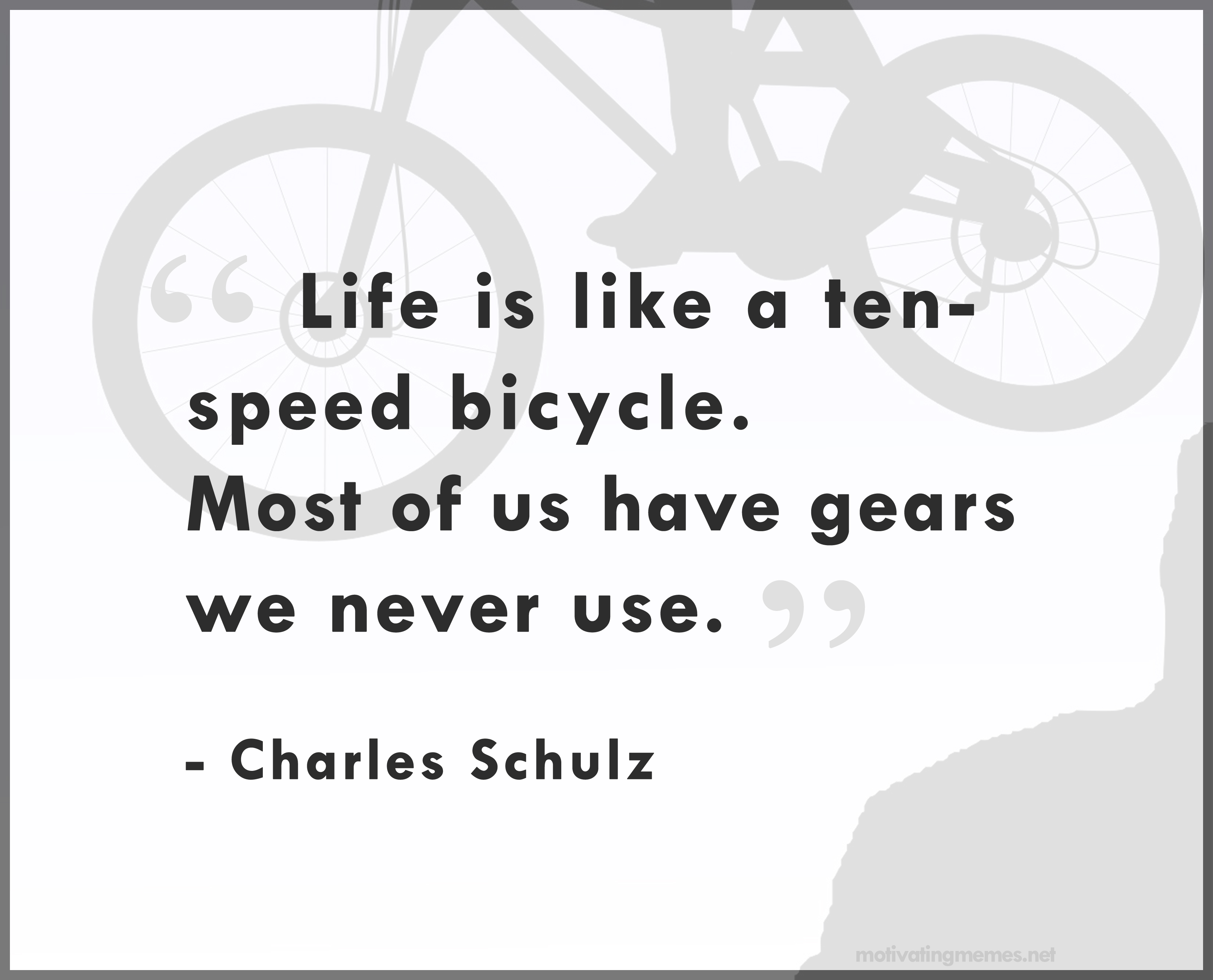 Life is like a ten speed bicycle. Most of us have gears we never use.